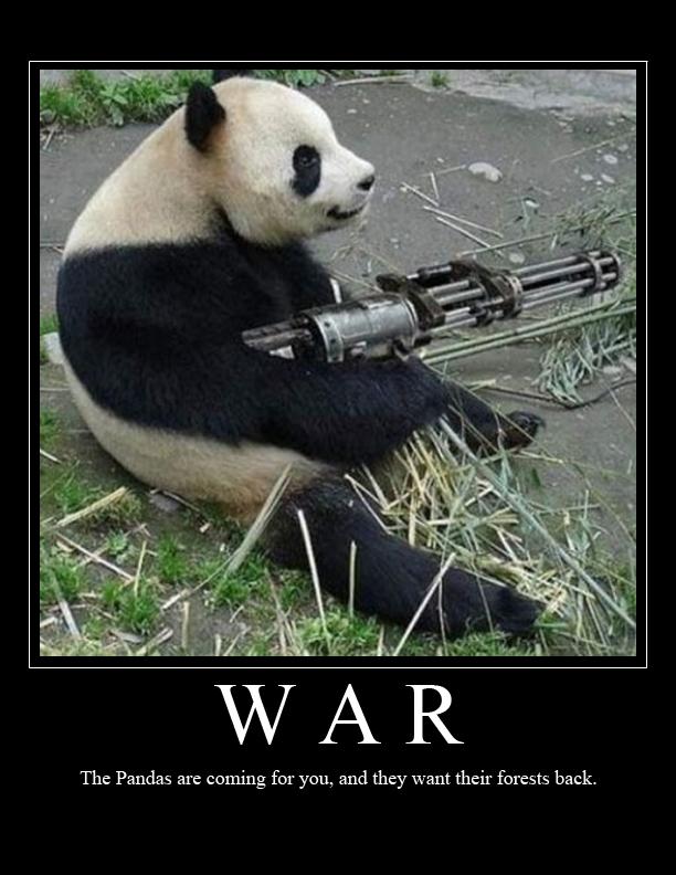 wars panda bear - photo #2