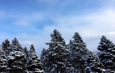 Snowy... Mountains?