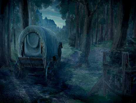 A cart in the woods