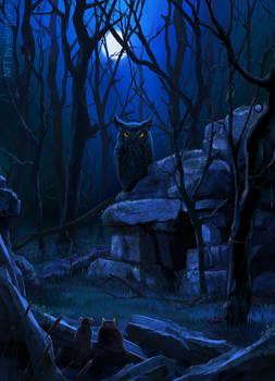 The Wizard Owl is Awake (NFT)