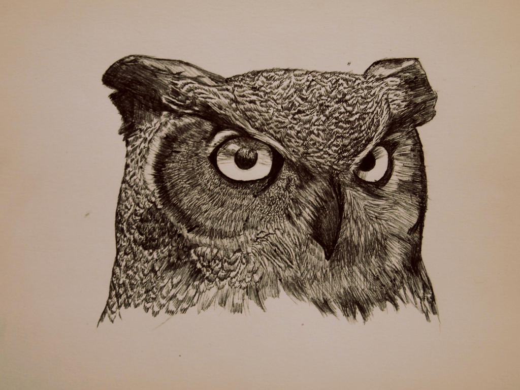 Great Horned Owl by kittens-and-arsenic