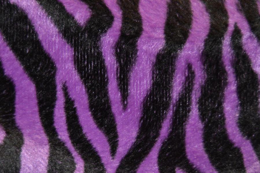 purple and black  zebra print by GlitterRainbowPower