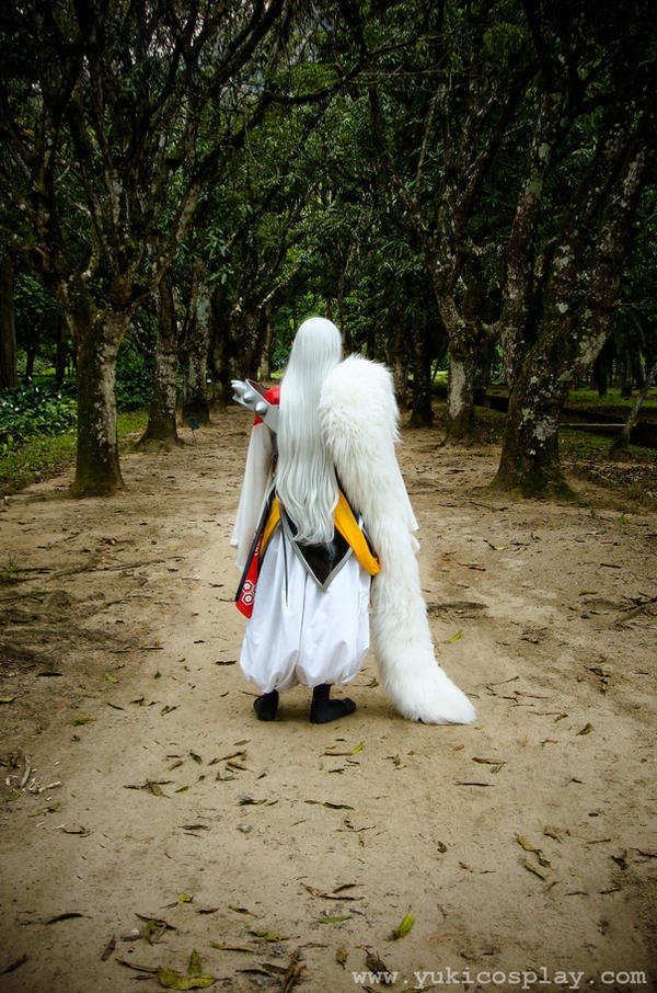 Walking the Path Alone by Yukilefay