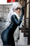 Black Cat - Spiderman