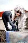 Cosplay: Black Cat on the wall