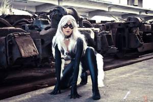BlackCat - Spiderman Cosplay 3 by Yukilefay
