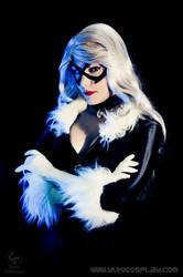 Black Cat Cosplay by Yukilefay