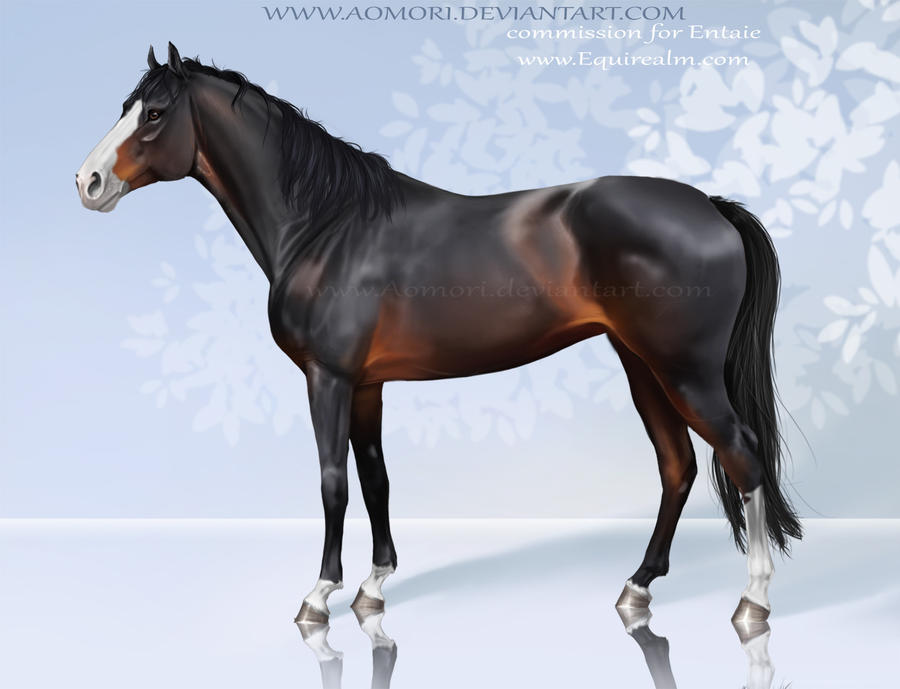 Kanchana - Recreated -  Commission___Thoroughbred_by_Aomori