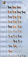 Horse coat colors chart