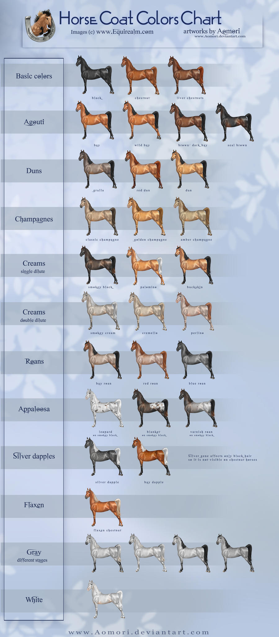 Horse coat colors chart by Aomori