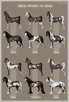 White patterns on horses by AonikaArt