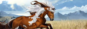 Mustang  *day version*