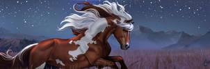 Mustang *night version*