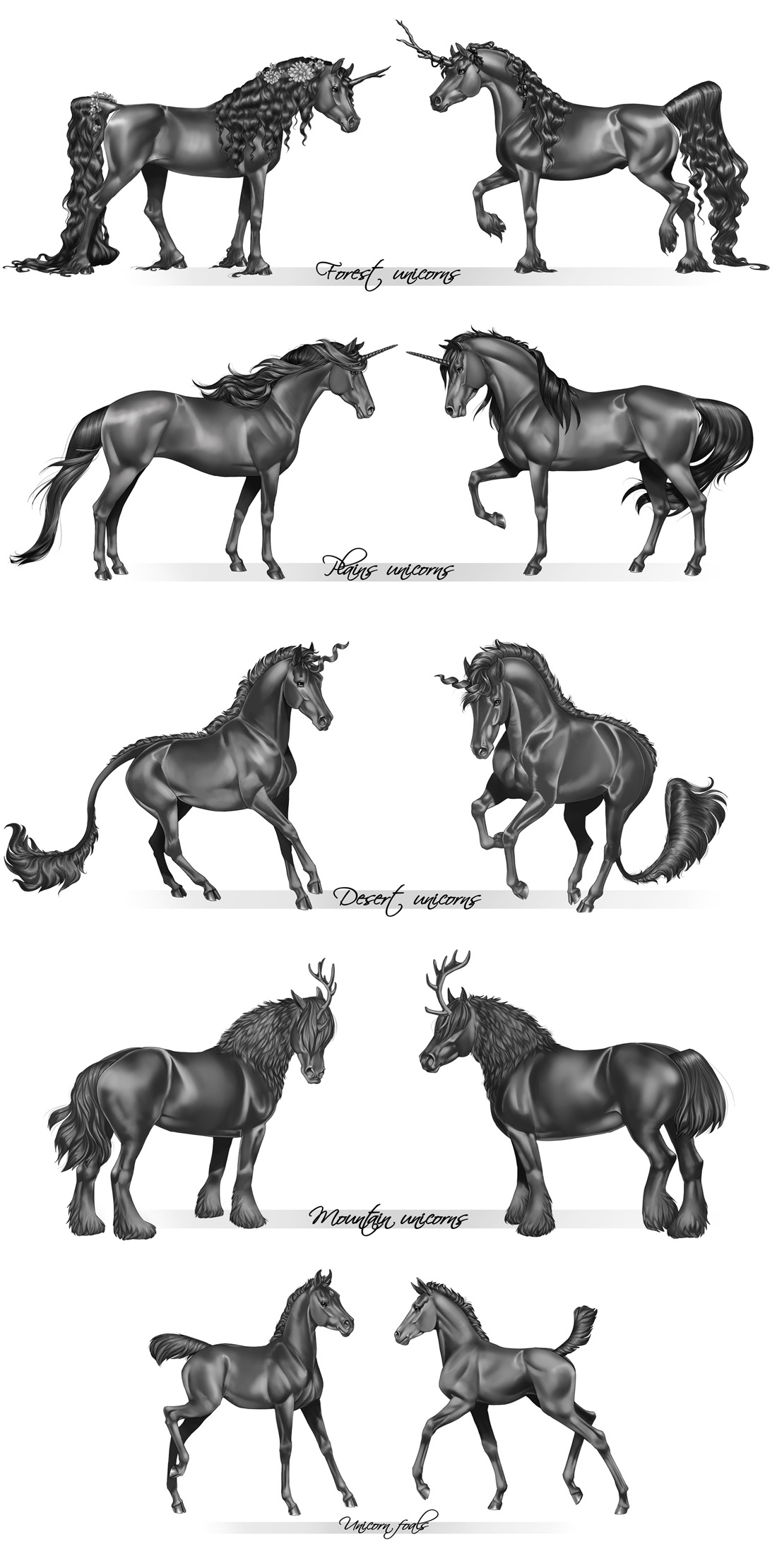 Unicorn species - grayscale by Aomori