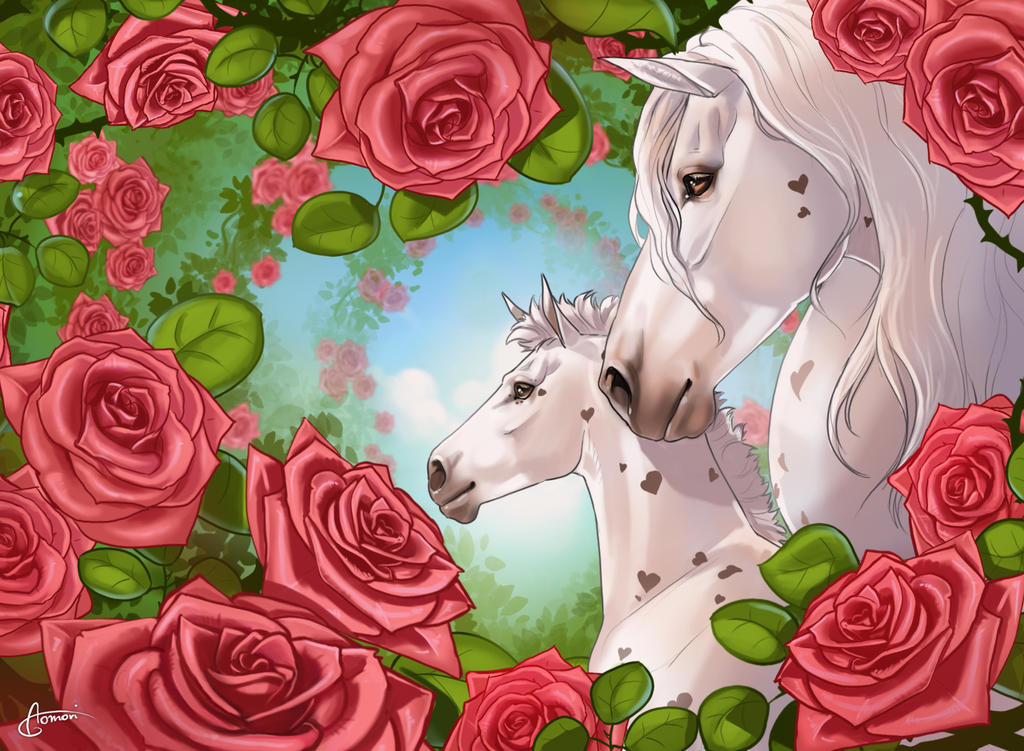 Queen of hearts by Aomori