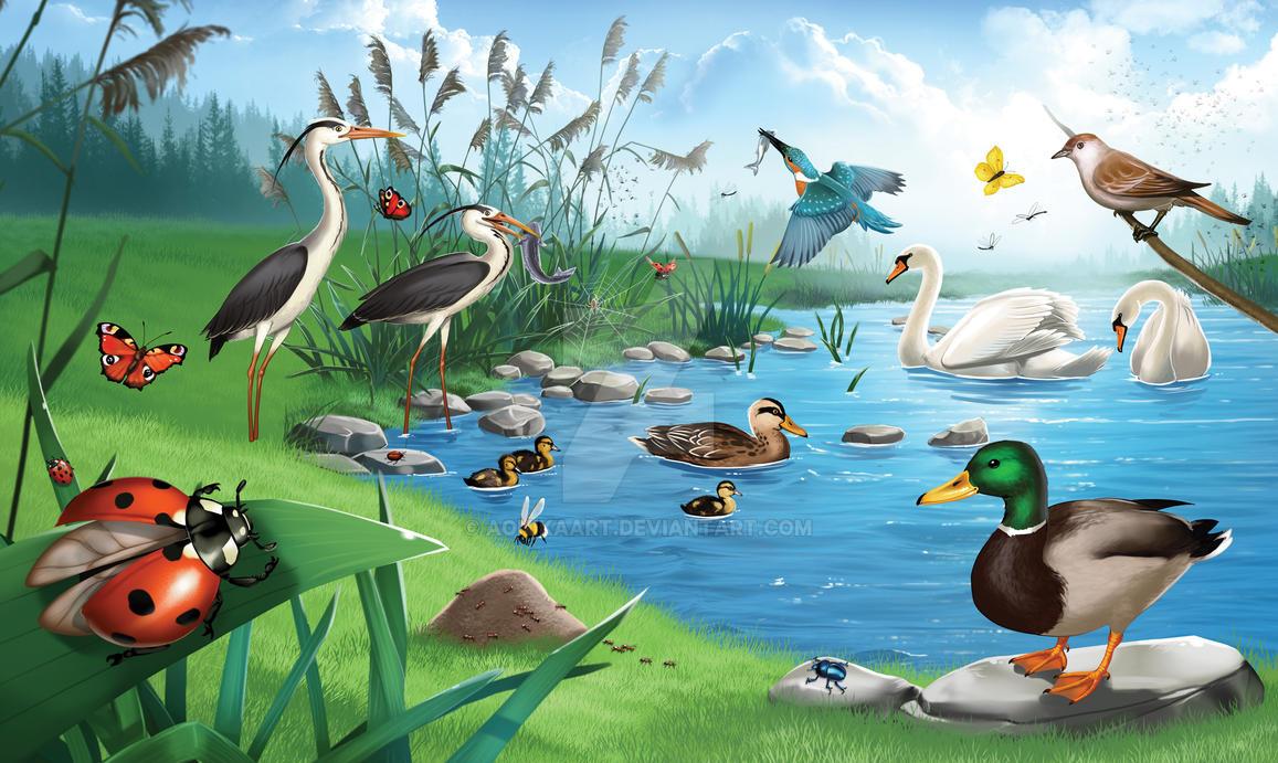 Waterside animals by Aomori