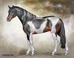 German Riding Pony