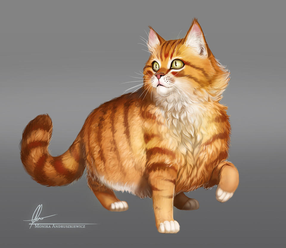 Ginger cat by Aomori