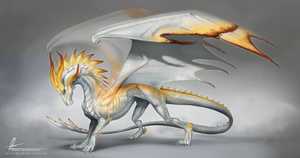Mayvara the sun dragoness by AonikaArt