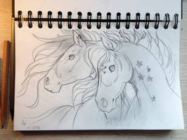 Sketch for Viviwonda