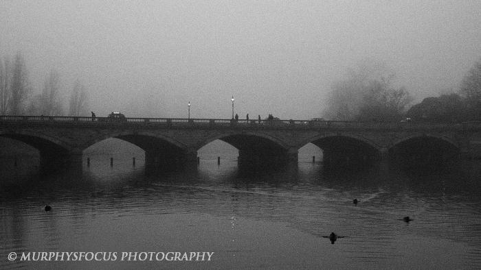 Bridged by JanMurphyPhoto