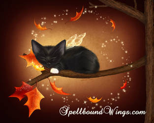 A Purrfect Autumn by MelissaDawn