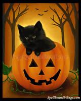 The Halloween Kitten by MelissaDawn
