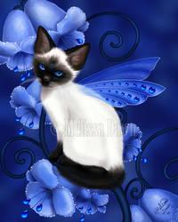 Sapphire Cat