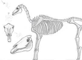 Skele horse by kittycheetah14