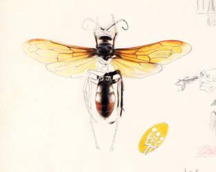 Brazilian wasp by aquadrop