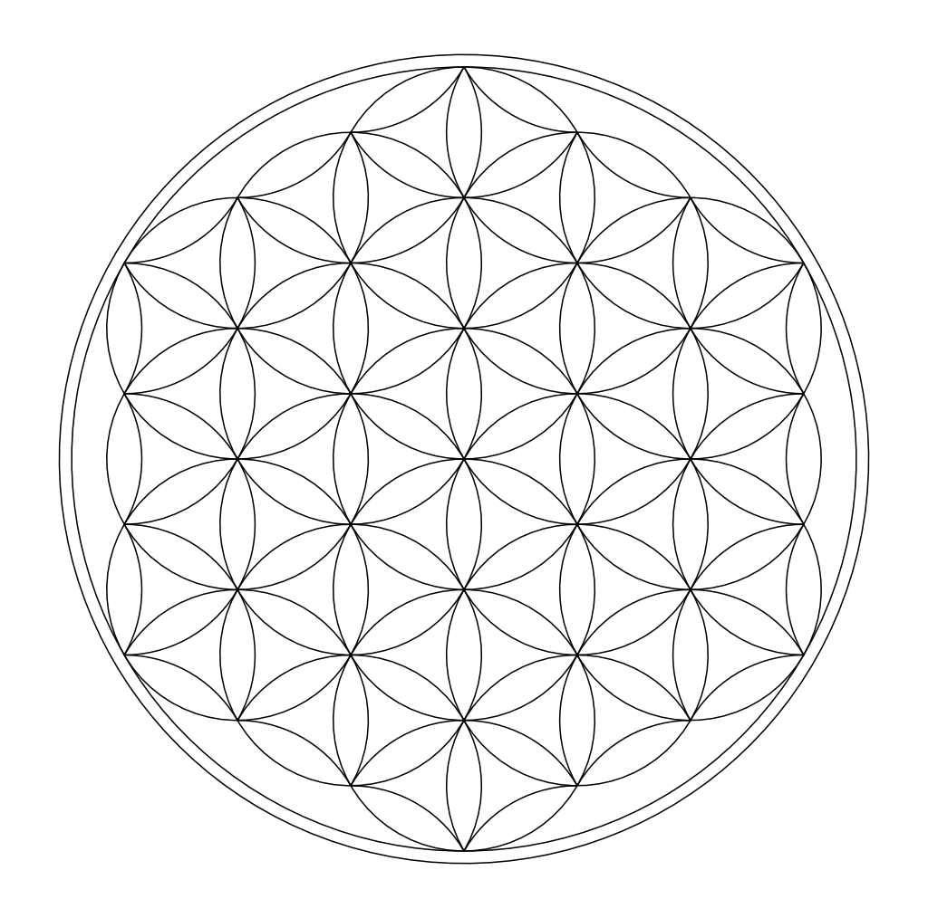 Image Result For Lotus Coloring Page