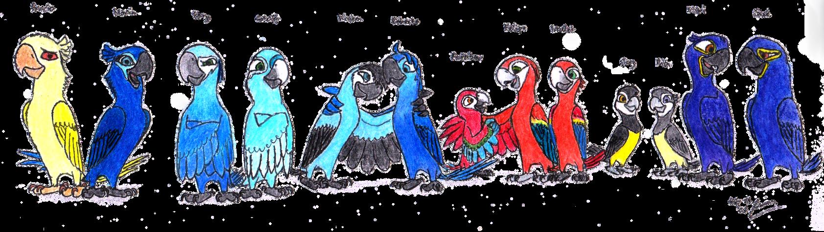 rio 2 birds names