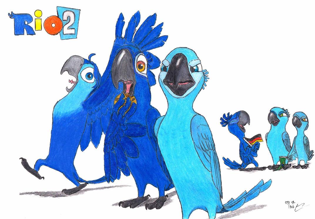 angry birds wallpaper 4k