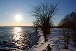 Winter Sun on the River