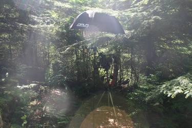 The Land of Camera by CreativEnergy