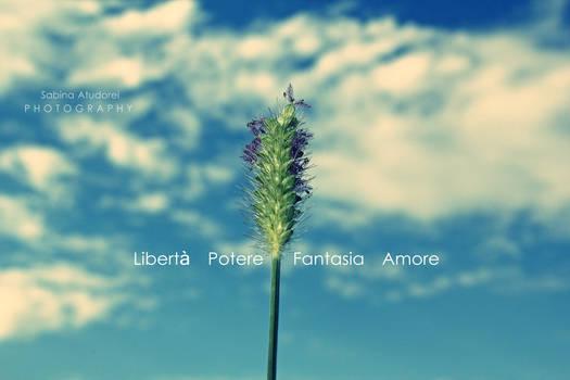 Liberta Potere Fantasia Amore