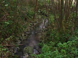 Creek by Rylius