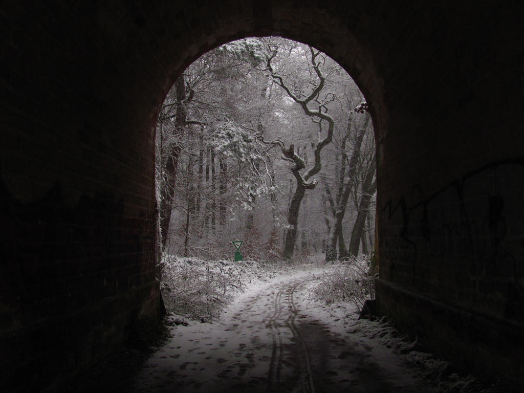 Portal to Winter by Rylius