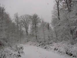Snow treeline by Rylius