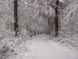 Snow Road by Rylius
