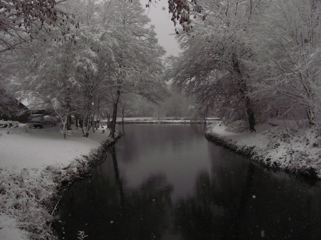Winter Reflection by Rylius