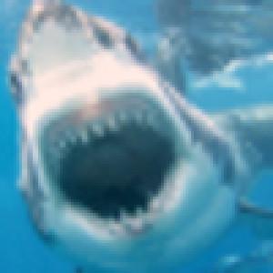 whome2473's Profile Picture