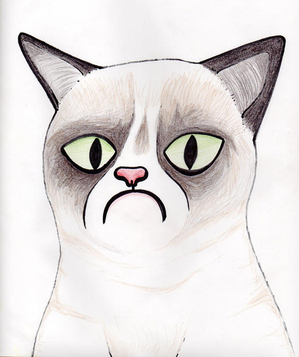 Tard the Grumpy Cat by Islandling on DeviantArt