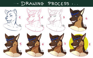 Drawing process BUST