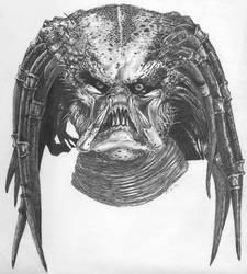 Predator by Bugstomper86
