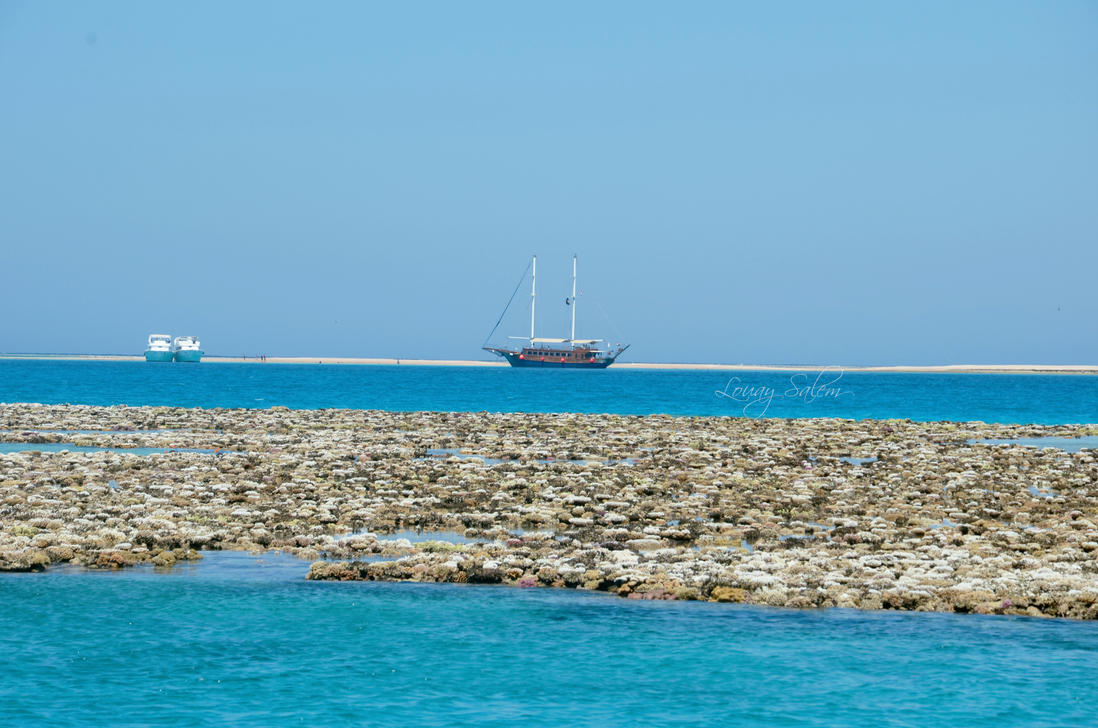 Sailing boat and Coral reefs by Louayr