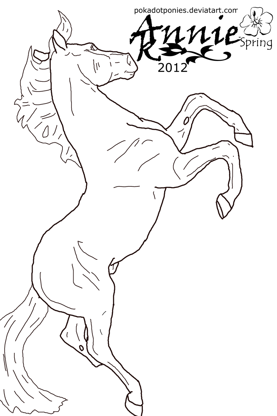 breyer coloring pages black stallion rearing free coloring pages