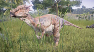 JWE/JPOG Dinopedia: Dracorex