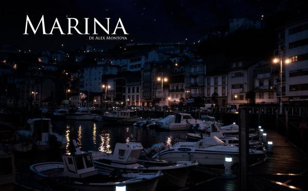 Marina concept art