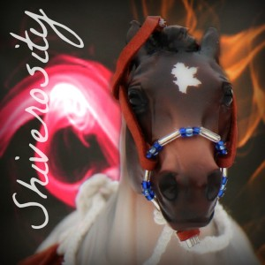 EquusInspiration's Profile Picture